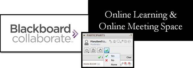 Online Learning with Blackboard Collaborate