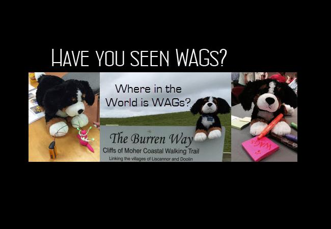 Have you seen WAGs?
